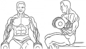 biceps-dumbell-curl