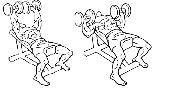 incline-dumbbell-bench-press